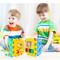 Cub educativ multifunctional Big Brain